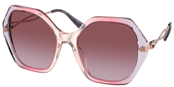Coach sunglasses HC 8315