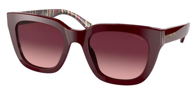 Coach sunglasses HC 8318