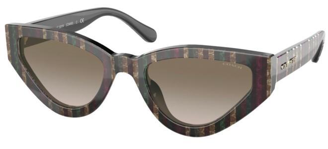 Coach sunglasses HC 8319