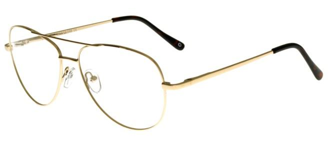 zerOne five eyeglasses ZO 790