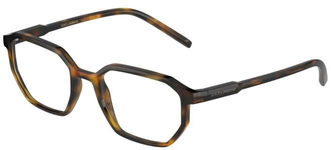 Dolce & Gabbana brillen DG 5060