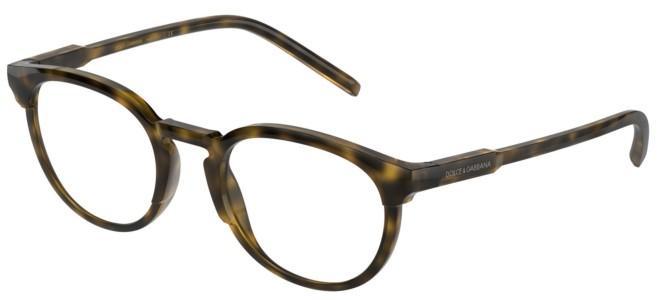 Dolce & Gabbana eyeglasses DG 5067