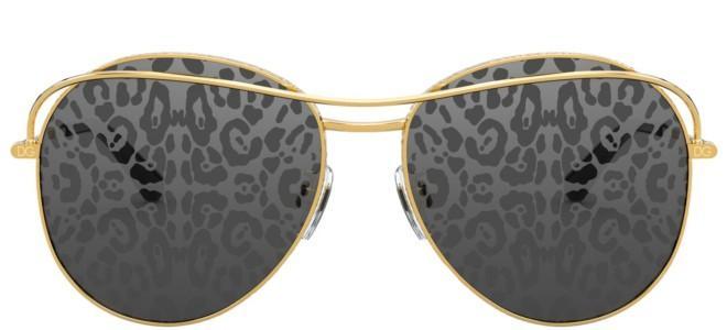 Dolce & Gabbana SLIM DG 2261
