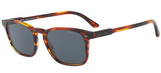 Giorgio Armani zonnebrillen FRAMES OF LIFE AR 8103