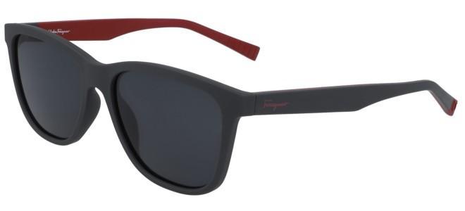 Salvatore Ferragamo zonnebrillen SF998S