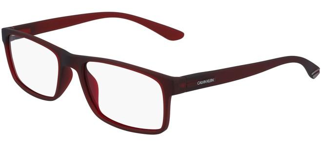 Calvin Klein eyeglasses CK19569