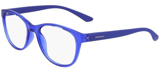 Calvin Klein eyeglasses CK19572