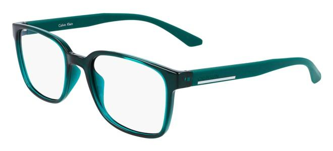 Calvin Klein eyeglasses CK20534