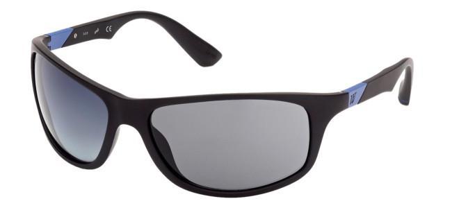 Web solbriller WE 0294