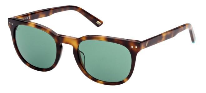 Web solbriller WE 0308