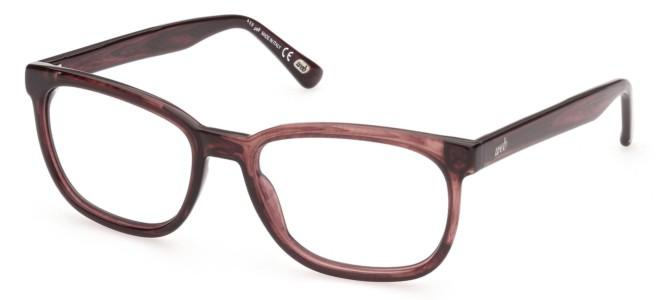 Web eyeglasses WE 5324