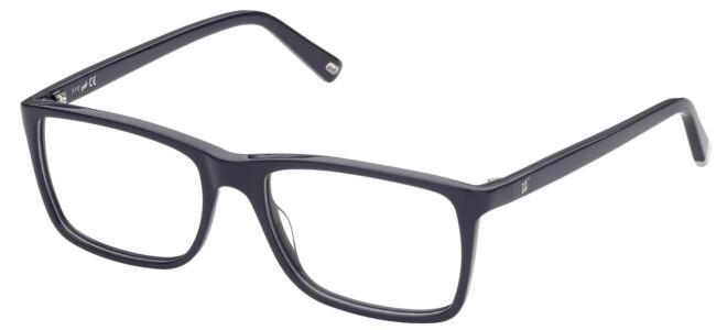 Web eyeglasses WE 5351