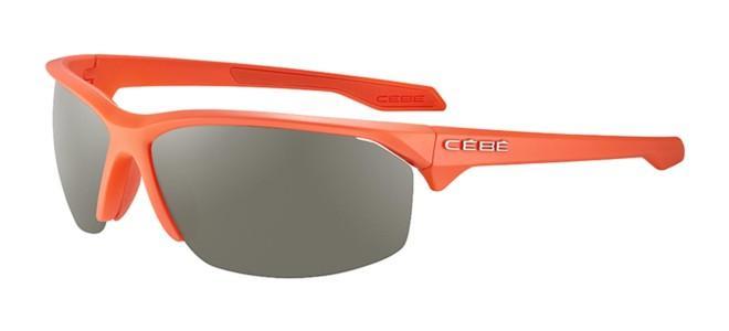 Cébé solbriller WILD 2.0